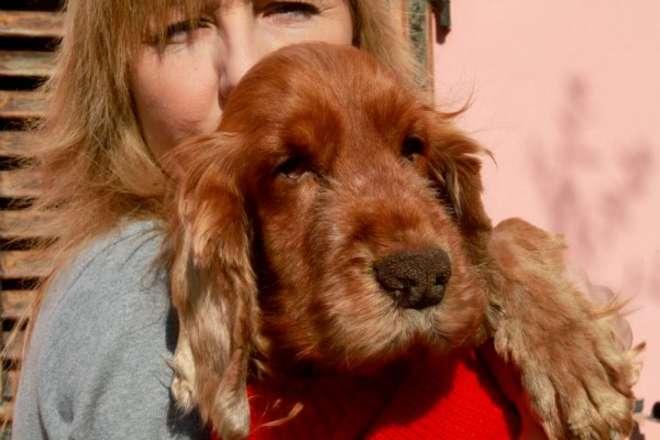 Mignon, il cane gettato nel cassonetto ha trovato casa